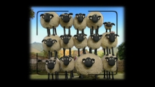 Shaun the Sheep - Episode 9