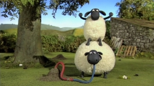 Shaun the Sheep - Episode 11