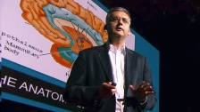 TED: Andres Lozano: Parkinson&#39;s, depression and the switch that might turn them off - Andres Lozano (2013)