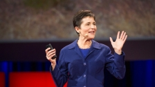 TED: Deborah Gordon: What ants teach us about the brain, cancer and the Internet - Deborah Gordon (2014)